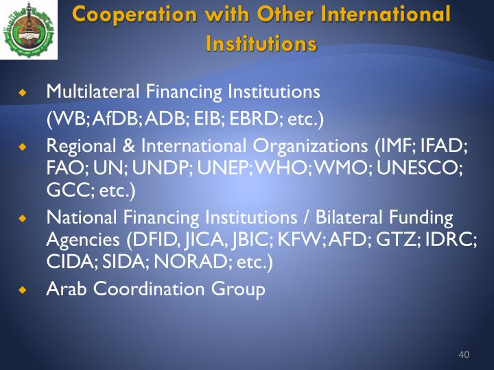 Cooperation with Other International Institutions