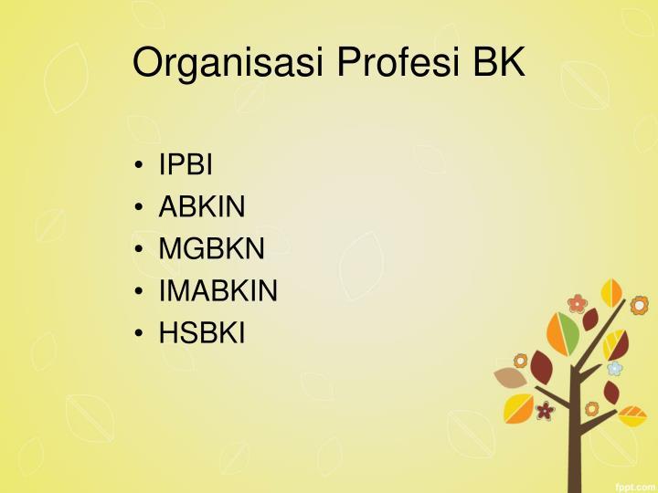 Organisasi Profesi BK