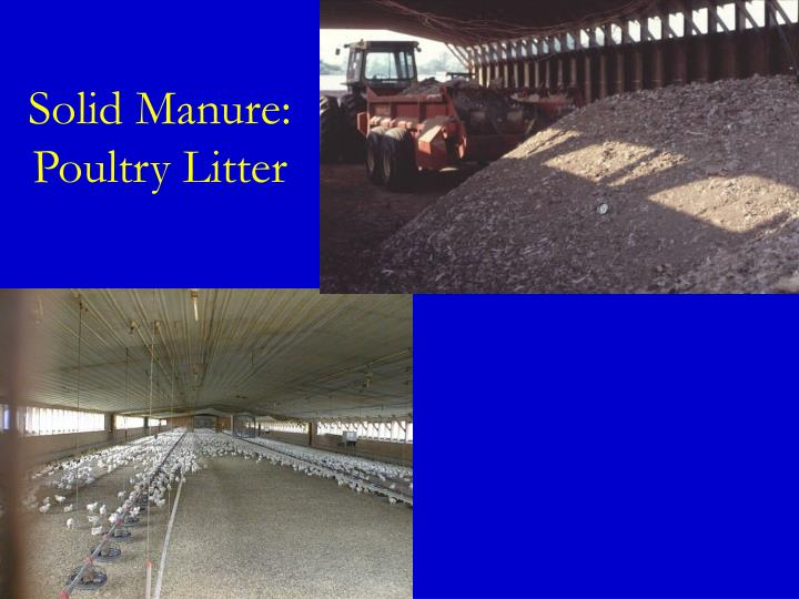 Solid Manure: Poultry Litter
