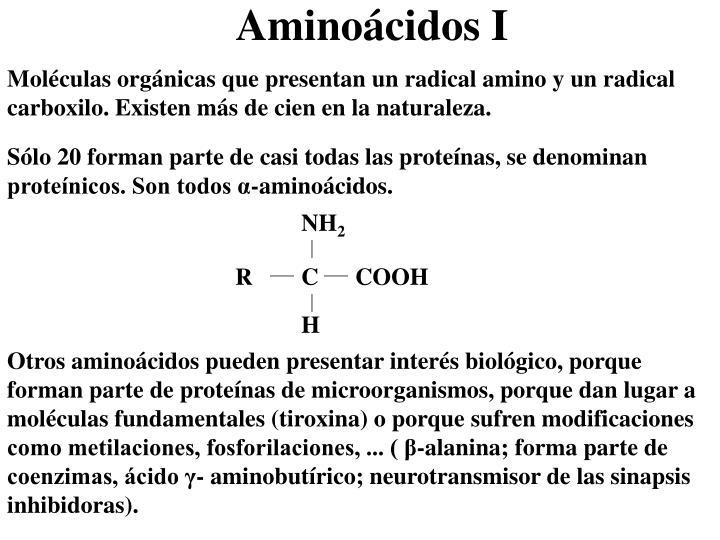 Moléculas orgánicas que presentan un radical amino y un radical carboxilo. Existen más de cien en la naturaleza.