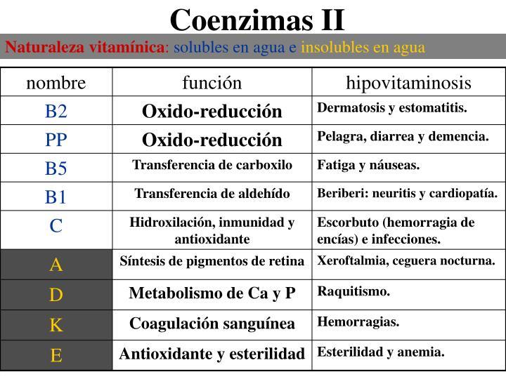 Naturaleza vitamínica