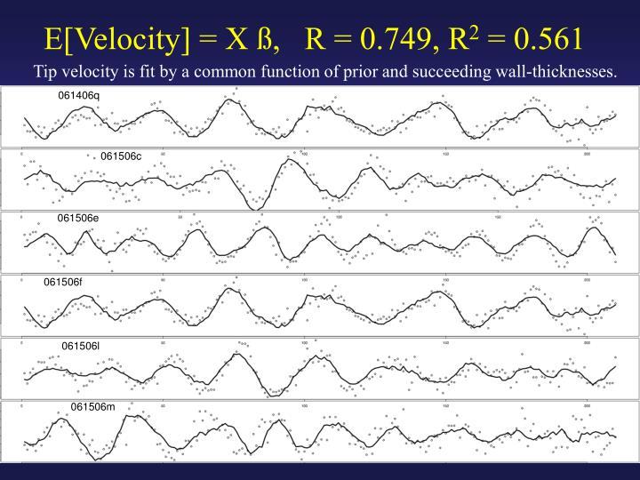 E[Velocity] = X ß,   R = 0.749, R
