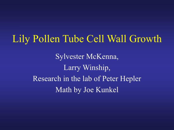 Lily Pollen Tube Cell Wall Growth