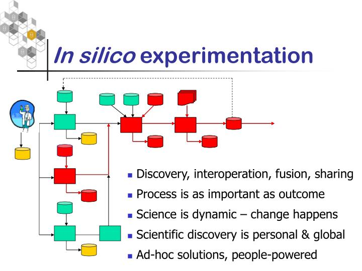 In silico experimentation