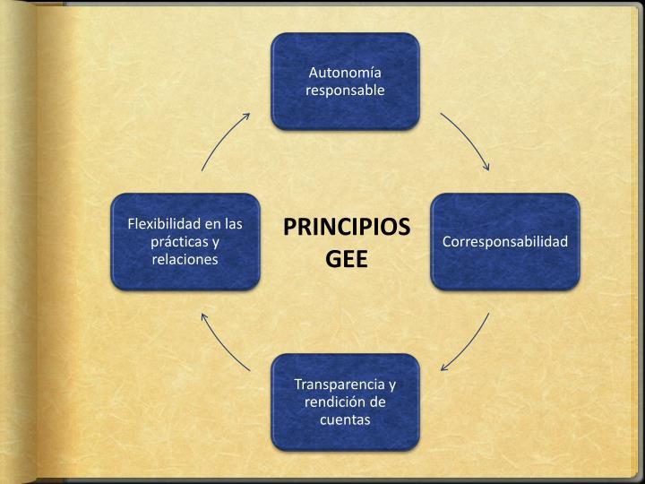 PRINCIPIOS GEE