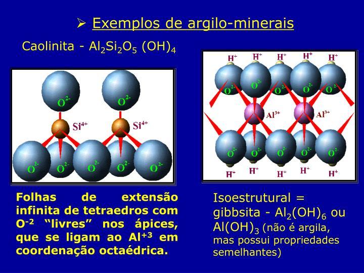 Exemplos de argilo-minerais