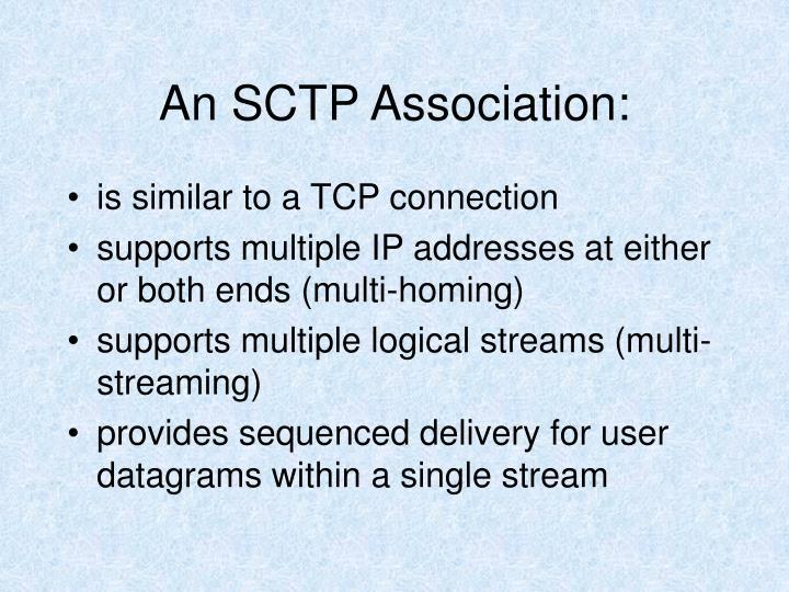 An SCTP Association: