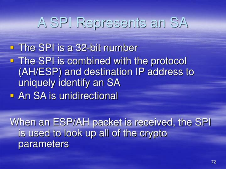 A SPI Represents an SA