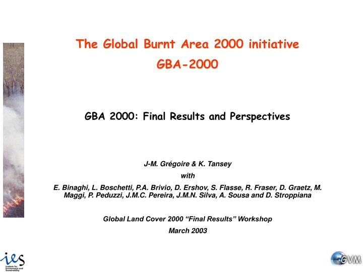 The Global Burnt Area 2000 initiative