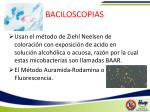 baciloscopias1