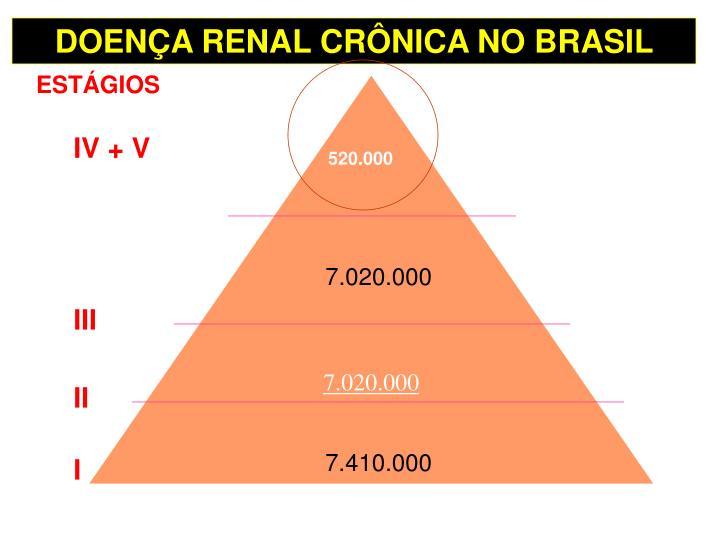 DOENÇA RENAL CRÔNICA NO BRASIL