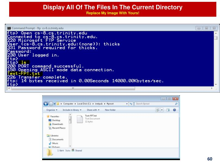 Display All Of The Files In The Current Directory