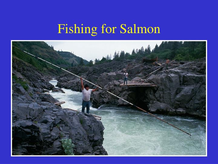 Fishing for Salmon