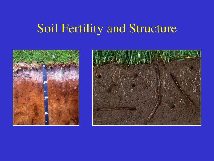 Soil Fertility and Structure