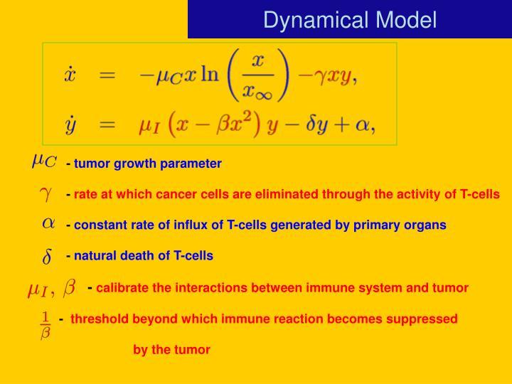 Dynamical Model