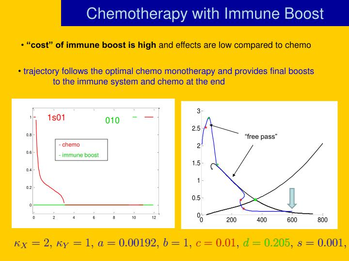 Chemotherapy with Immune Boost