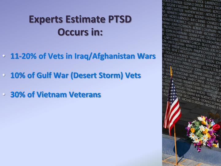 Experts Estimate PTSD
