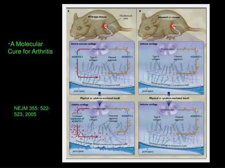 A Molecular Cure for Arthritis