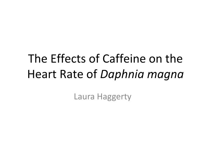 The effects of caffeine on the heart rate of daphnia magna