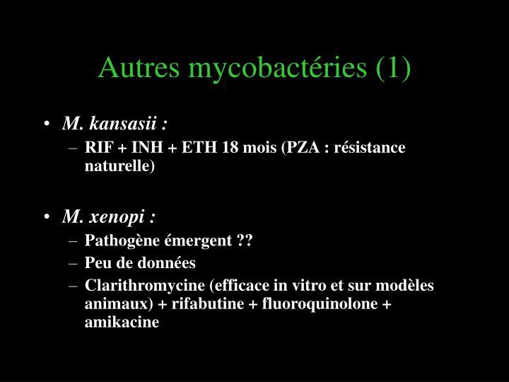 Autres mycobactéries (1)