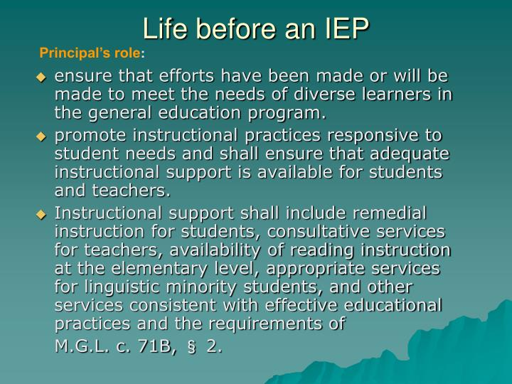 Life before an IEP