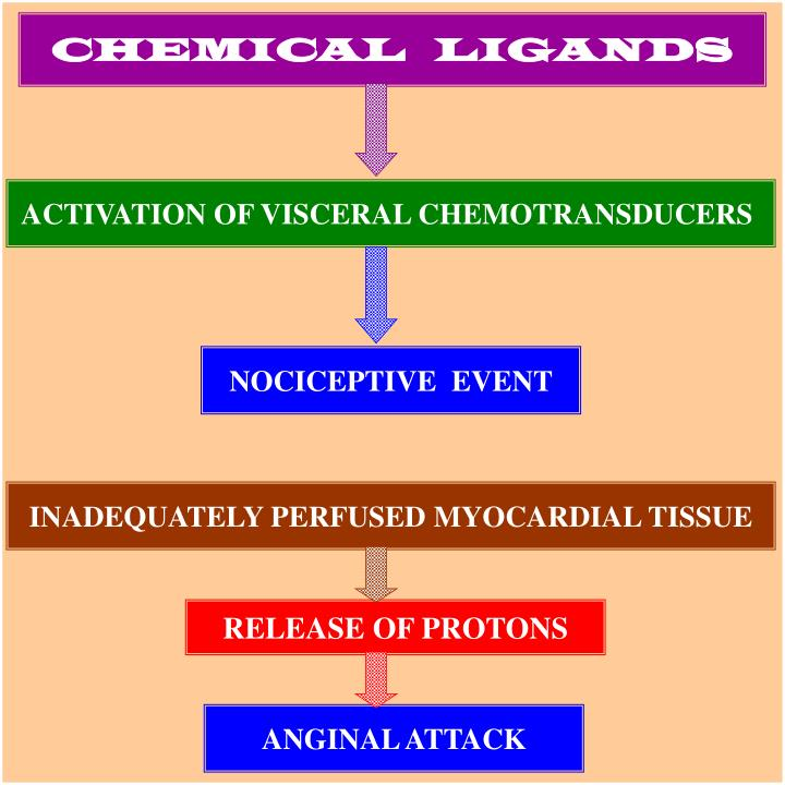 CHEMICAL   LIGANDS