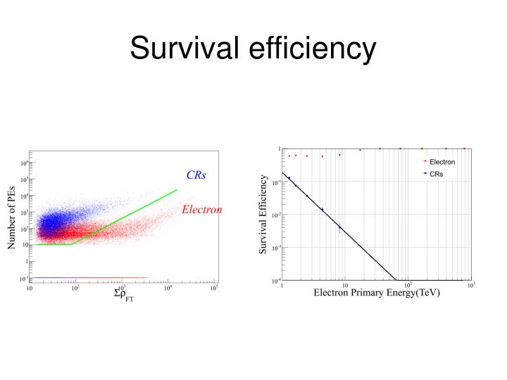 Survival efficiency