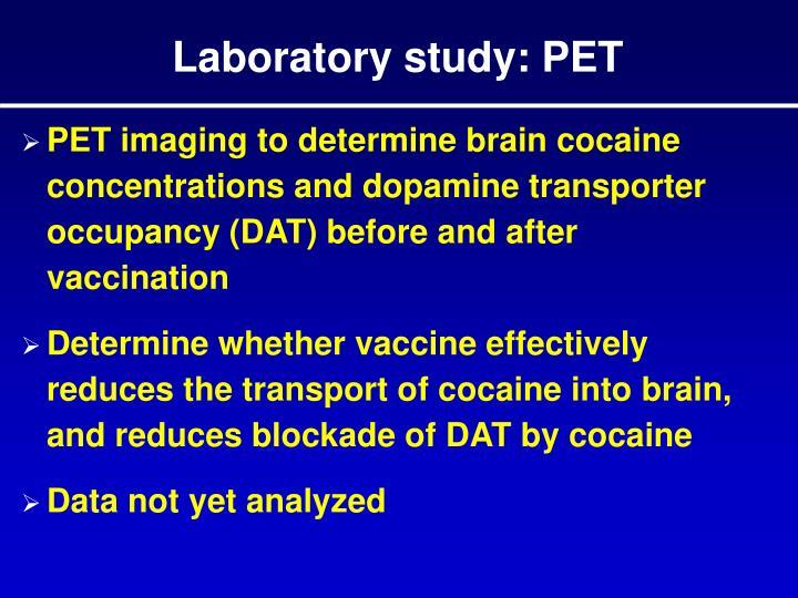 Laboratory study: PET