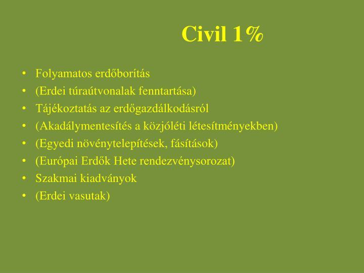 Civil 1%