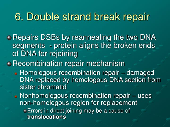 6. Double strand break repair