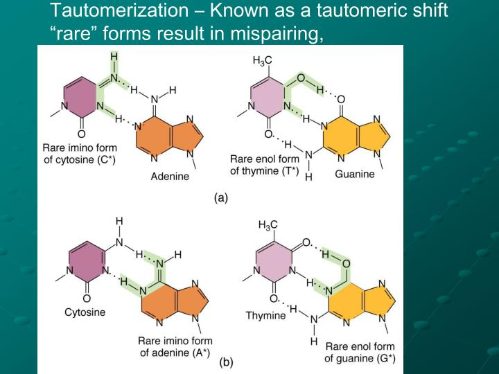 Tautomerization – Known as a tautomeric shift
