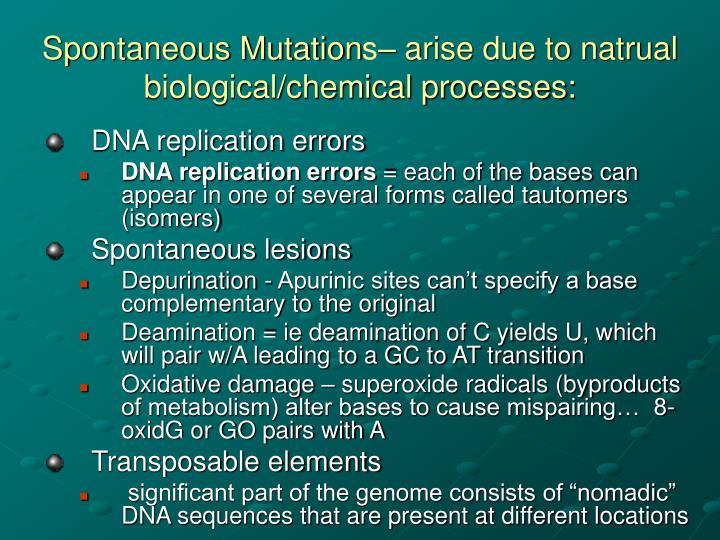 Spontaneous Mutation