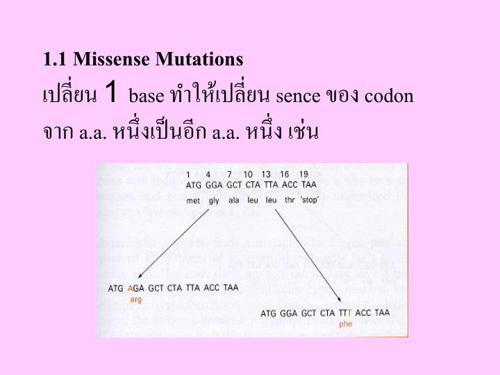 1.1 Missense Mutations