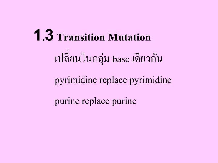 1.3 Transition Mutation