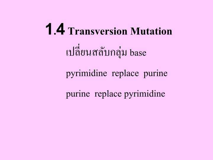 1.4 Transversion Mutation