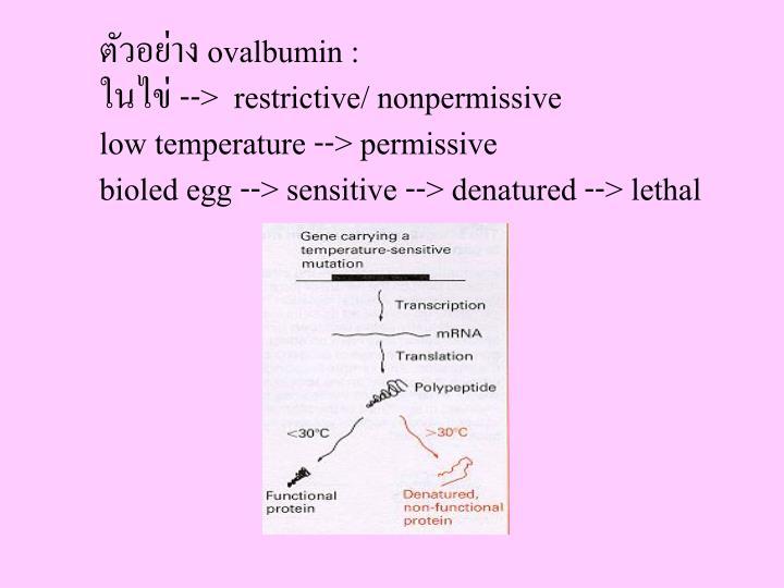 ตัวอย่าง ovalbumin :