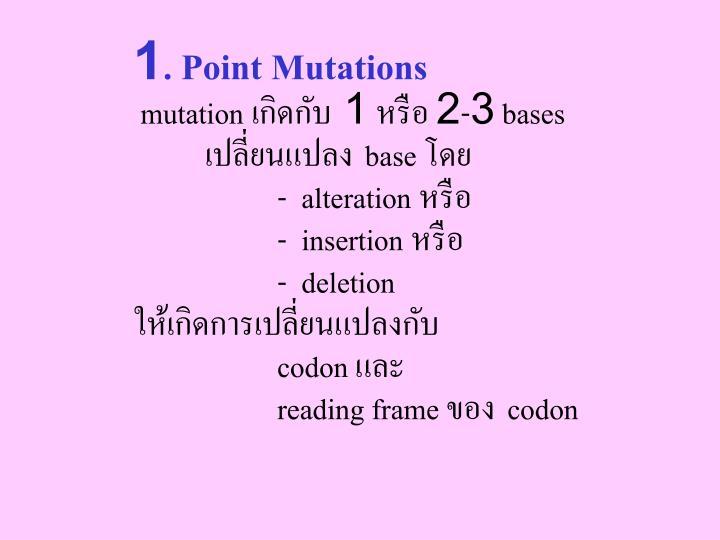 1. Point Mutations