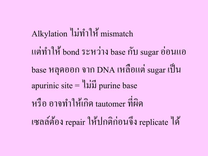 Alkylation ไม่ทำให้ mismatch