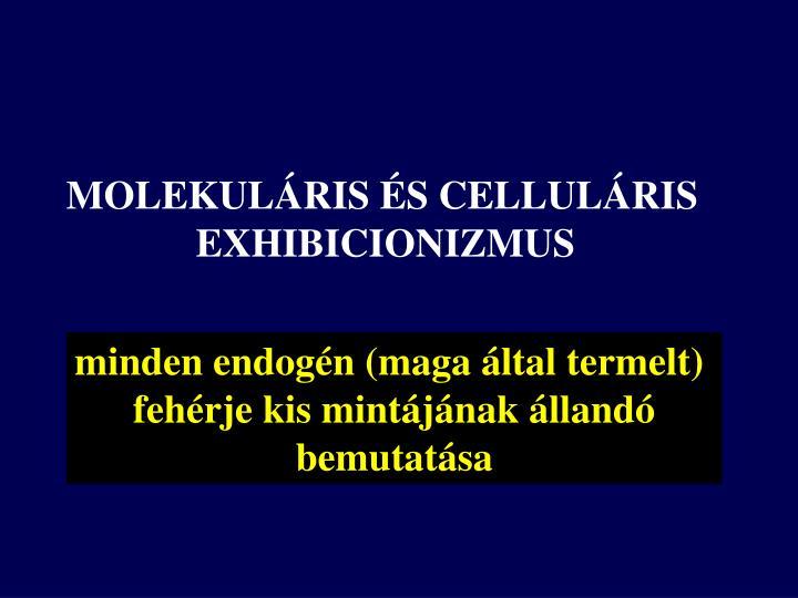MOLEKULÁRIS ÉS CELLULÁRIS