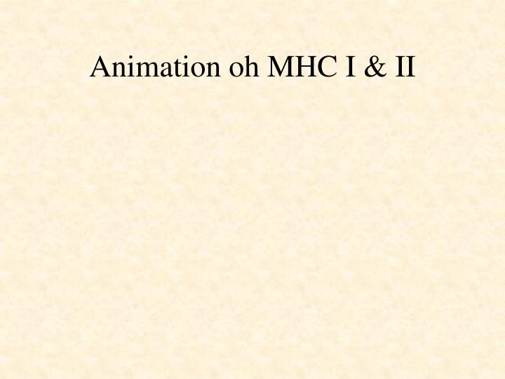 Animation oh MHC I & II
