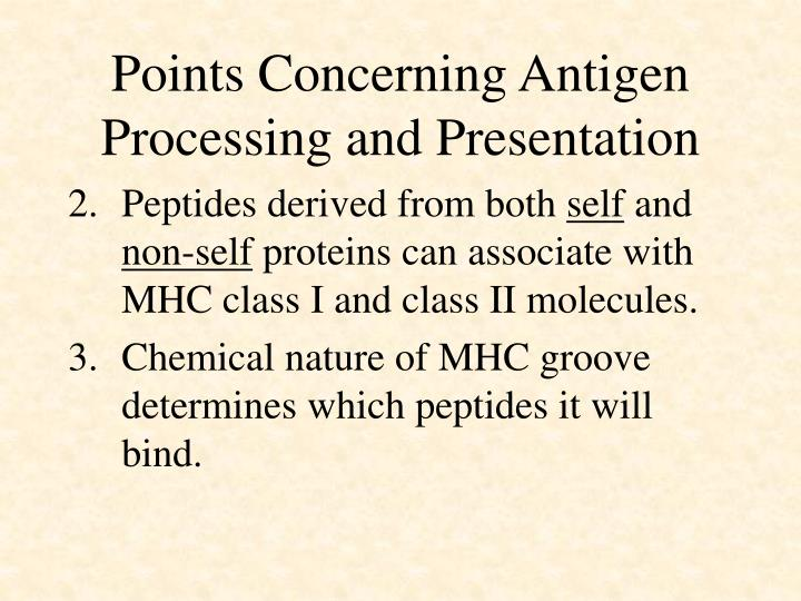 Points Concerning Antigen Processing and Presentation