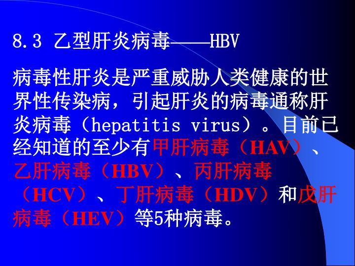 8.3 乙型肝炎病毒