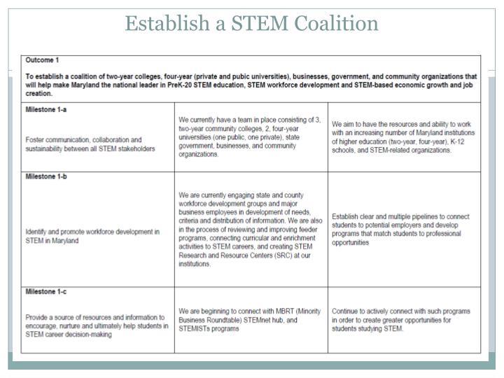 Establish a STEM Coalition
