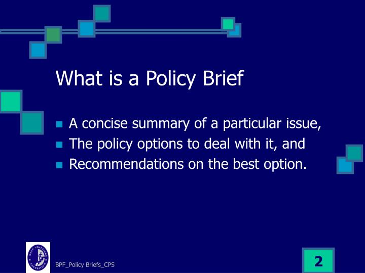 What is a policy brief
