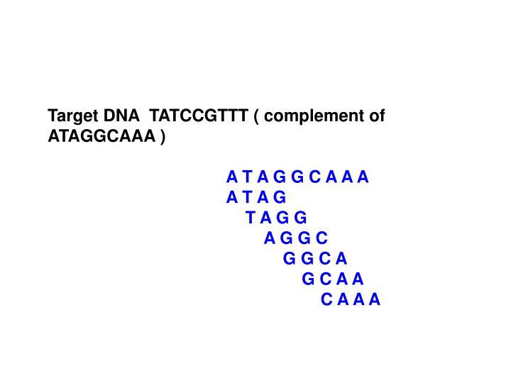 Target DNA  TATCCGTTT ( complement of ATAGGCAAA )