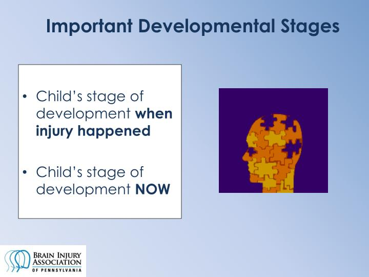 Important Developmental Stages