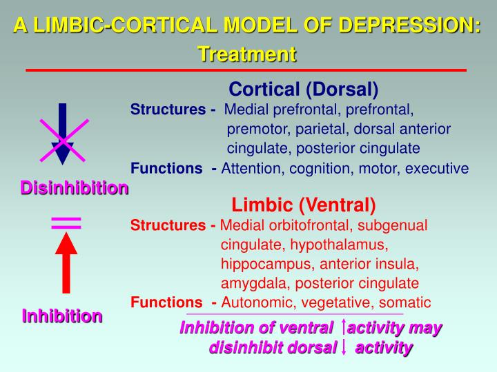 A LIMBIC-CORTICAL MODEL OF DEPRESSION: