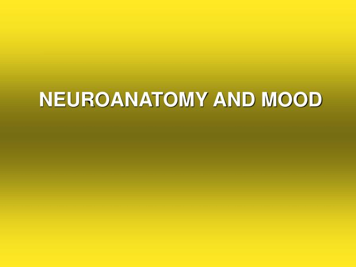 NEUROANATOMY AND MOOD