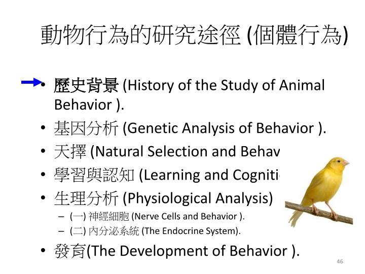 動物行為的研究途徑