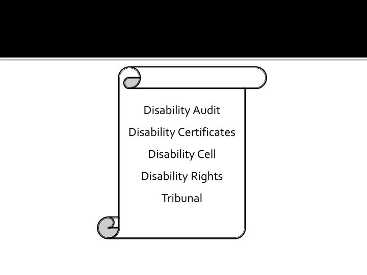 Disability Audit